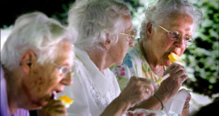 Residents of an old-people's home in Leiden enjoy ice-cream to counter the extreme temperatures, 26 July 2006. Europe baked again 26 July under a relentless sun with temperatures well above 30 degrees Celsius (90 degrees Fahrenheit), though forecasters were promising temporary relief would come with storms and cooler weather in the next few days. AFP PHOTO / ANP / ROBIN UTRECHT           ** NETHERLANDS OUT **
