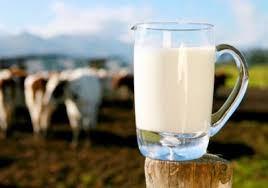 الحليبالدسمالقلب
