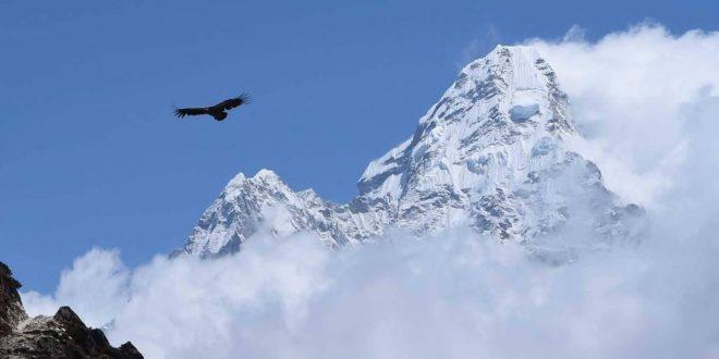 جبل ثلج