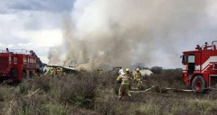 "Rescue workers and firefighters are seen at the site where an Aeromexico airliner has suffered an ""accident"" in a field near the airport of Durango, Mexico, Tuesday, July 31, 2018. (Civil Defense Office of Durango Photo via AP)"