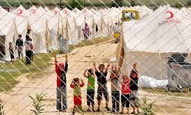 اللاجئين