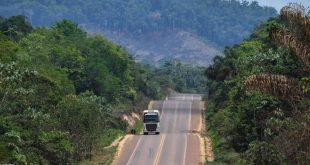 غابة الأمازون