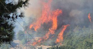 حريق القبيات