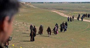 combatientes-del-estado-islamico