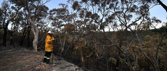 les incendies Australie